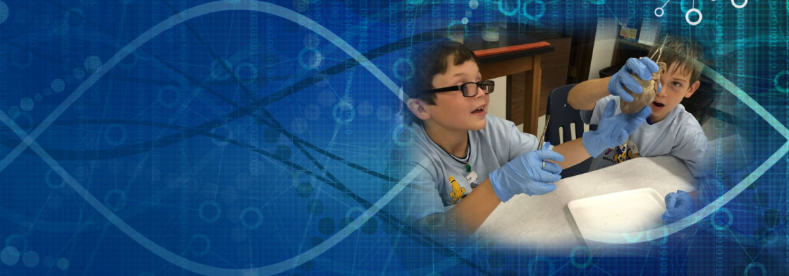 After School Science & Technology Programs